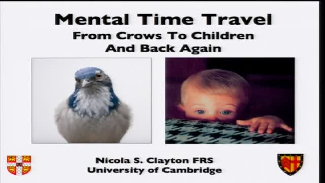 "Prof Nicola Clayton: ""Mental Time Travel: From Crows to Children and Back Again"""