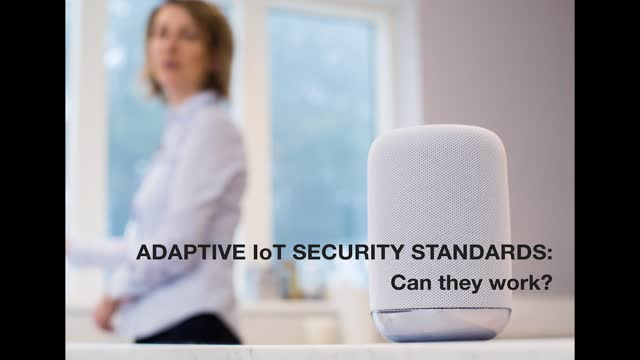 Adaptive IoT Security Standards: Can they work?